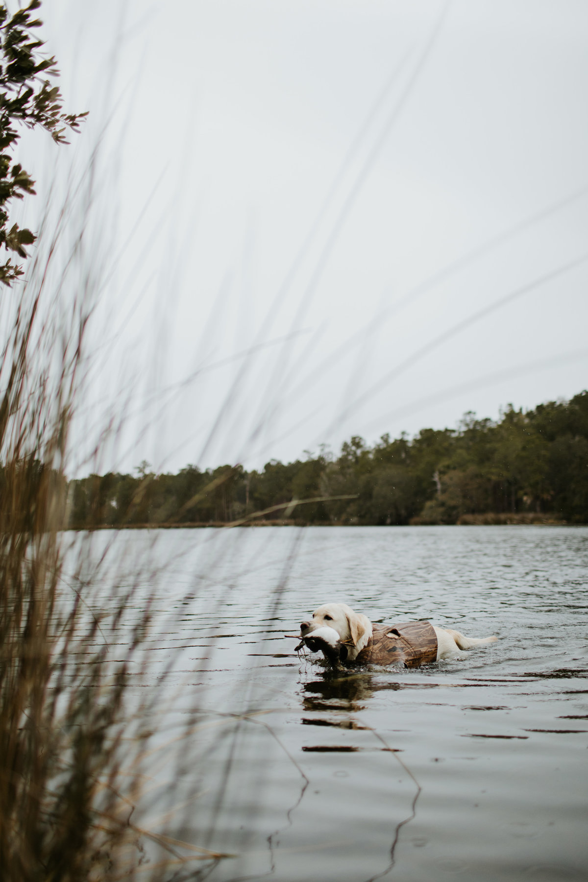 Charleston-sc-duck-hunting-lifestyle-photography-7