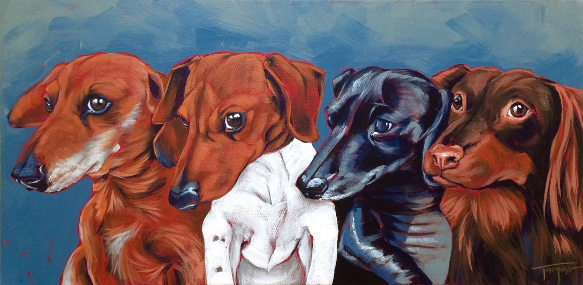 Torregrossa Fine Art Custom Pet Portrait by Stephanie T Gaffney Dachshunds