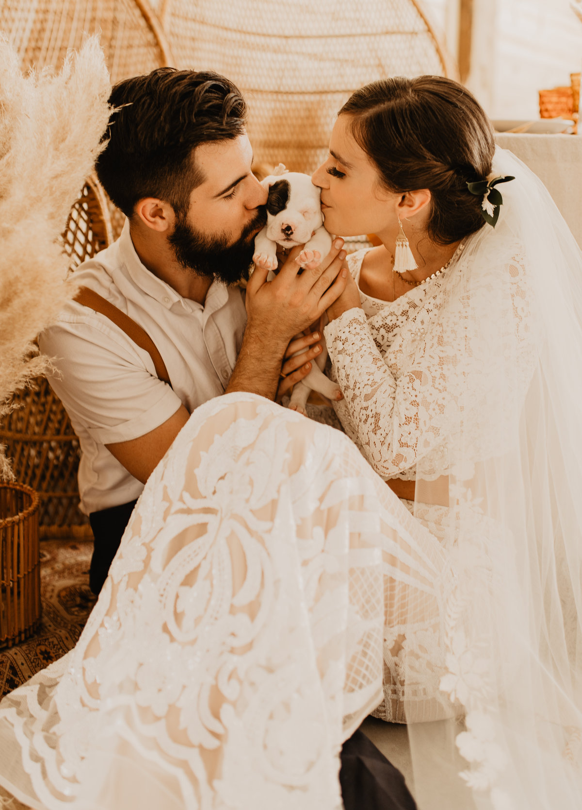dog_in_wedding_Furry_Ventures_Pet_Care