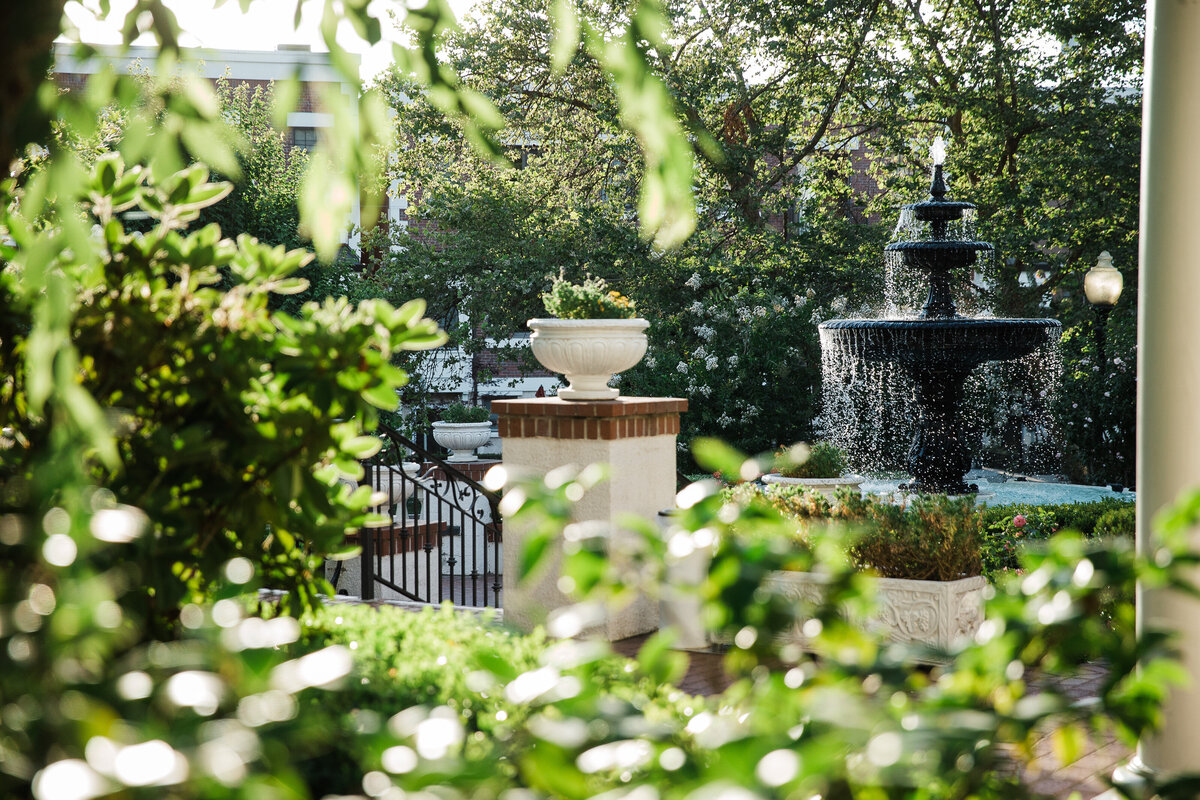 Tucked in the heart of Midtown, Vizcaya's lush greenery and gardens creates a romantic getaway from the hustle and bustle of downtown.