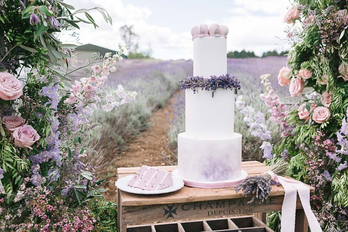 Provence Inspired Lavender Shoot-3