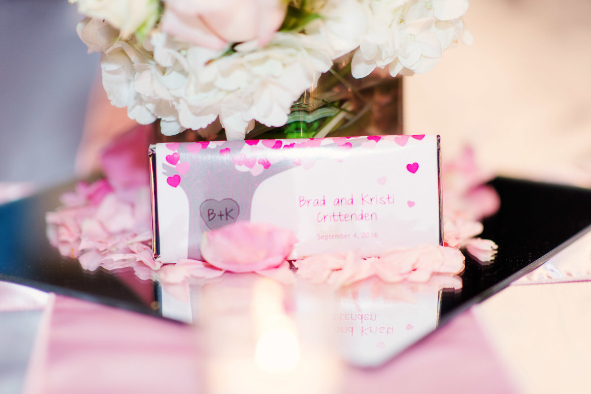 Visions Centerpointe Wedding Photography in Traverse City Michigan