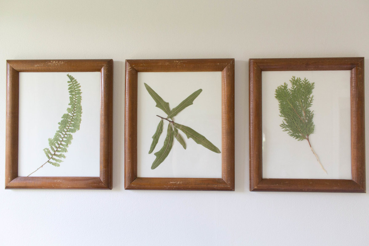 framed-botanicals-gallery-wall