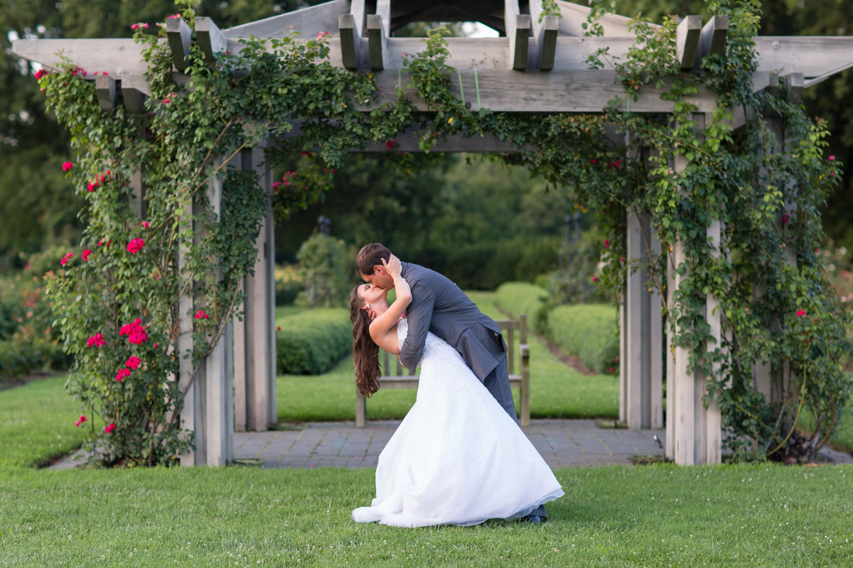 groom dipping bride in the rose garden at norfolk botanical garden