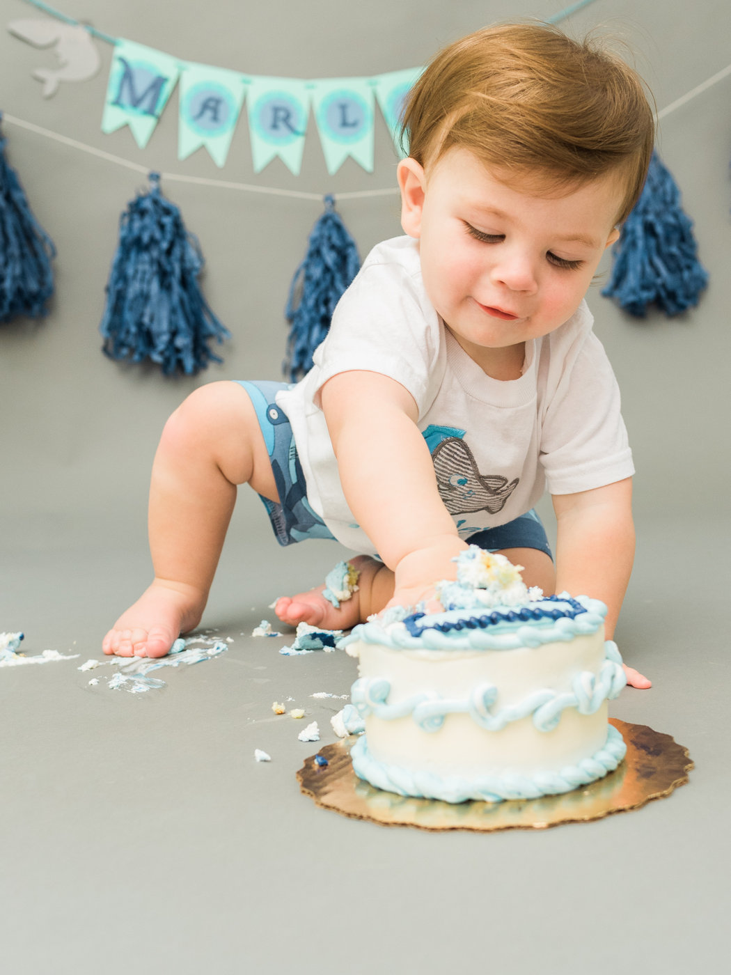 Marley s One Year Cake Smash-October 2017-0017