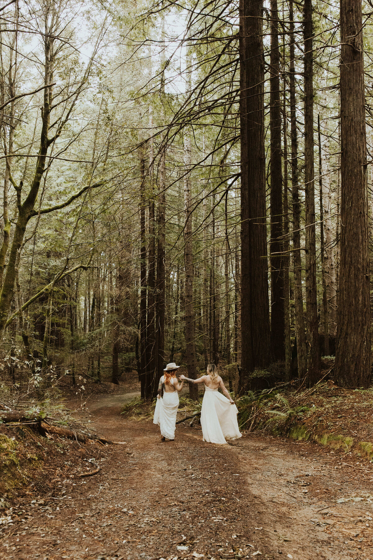 redwoods_california_intimate_elopement_coast_lgbtq_281 2