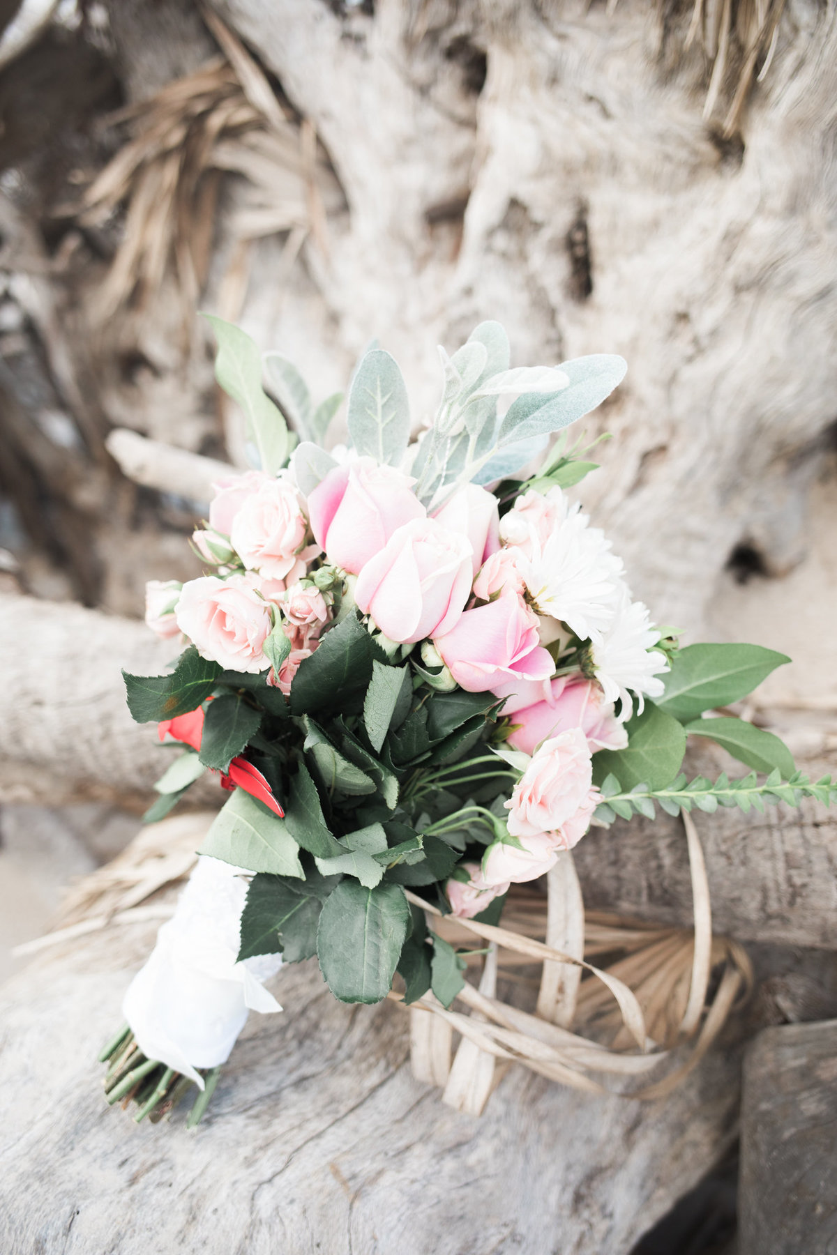 Bridal Bouquet on Drift Wood during Jekyll Island Wedding