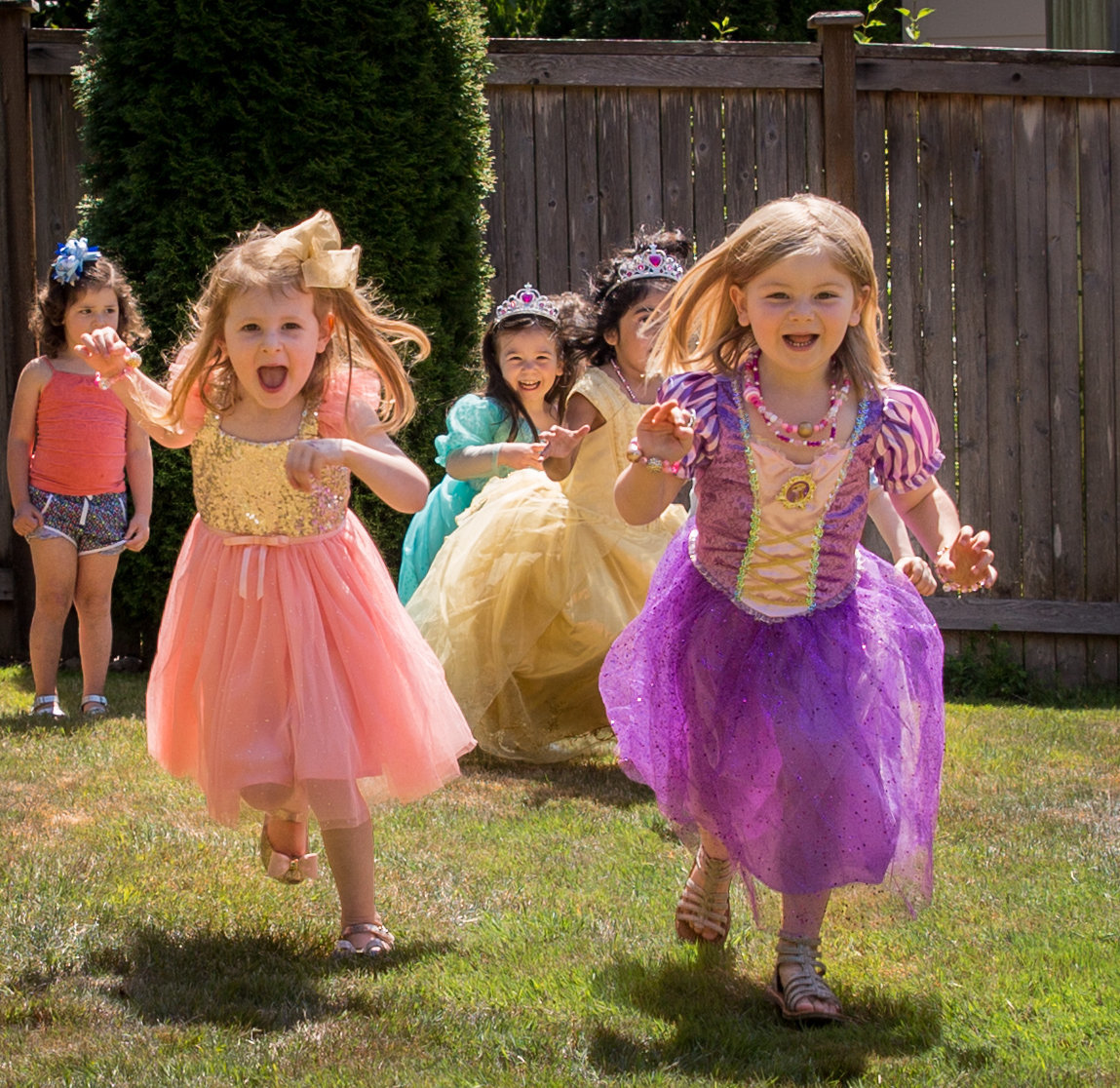 Princesses Running crop
