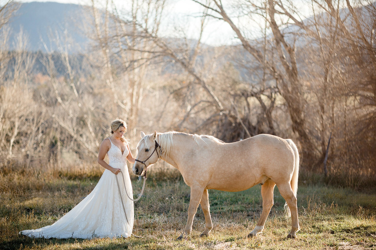 Everett Ranch Rocky Mountain Wedding Outdoor Barn Rustic Salida Colorado Alpaca Collegiate Peaks Vintage Ranch Fish Horse White Lace 010