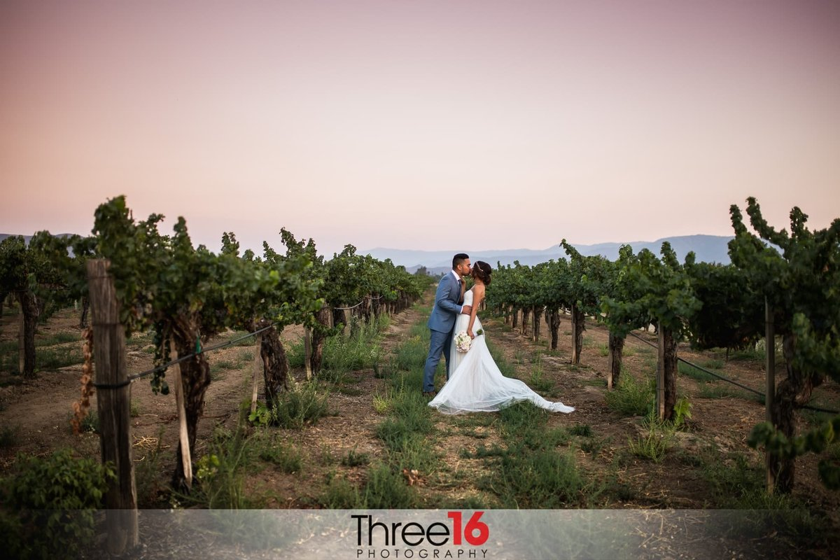 Ponte Winery Wedding Temecula Venue Orange County Wedding Photographer Los Angeles Photography Three16 Photography