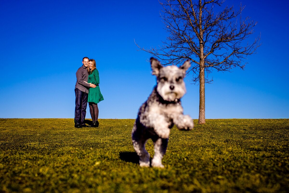 A couple laughs together as their dog runs by during a Montrose Harbor engagement session.