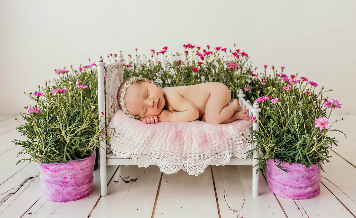Dallas Fresh Pink Flower Newborn