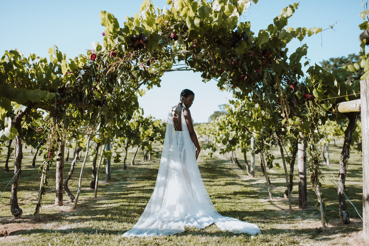 The Stars Inside - Vineyard Destination Wedding - Laura Martha Photography (126)