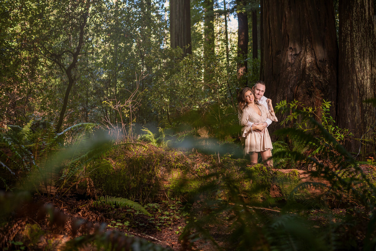 Redway-California-engagement-photographer-Parky's-Pics-Photography-Humboldt-County-redwoods-Avenue-of-the-Giants-engagement-4.jpg