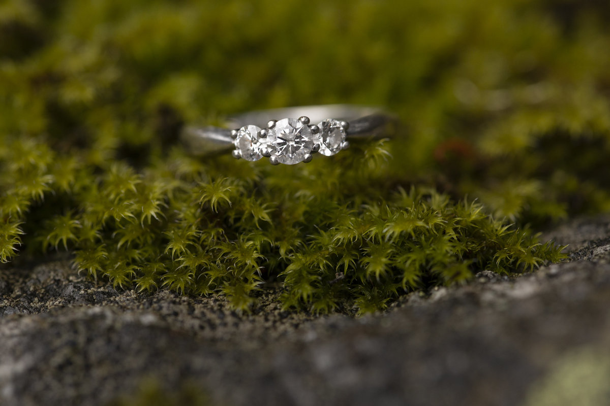 David Kimberly Chilliwack Lake Engagement (1)