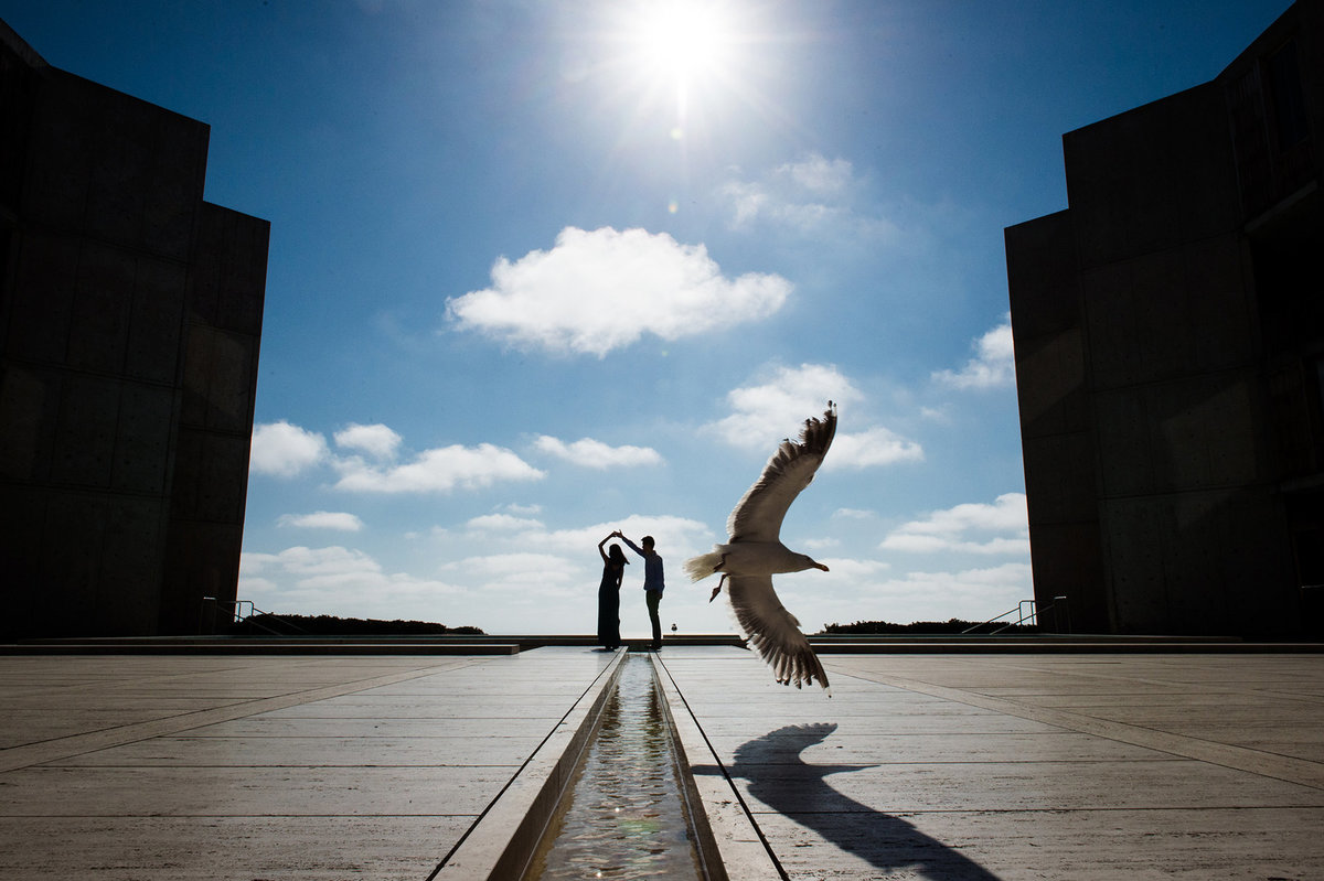 couple dancing in bg and bird in front on clear day