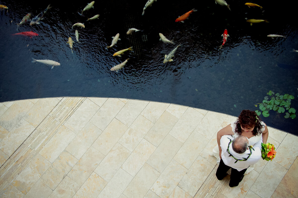 Aerial View of the Bride and Groom Next to Koi Pond