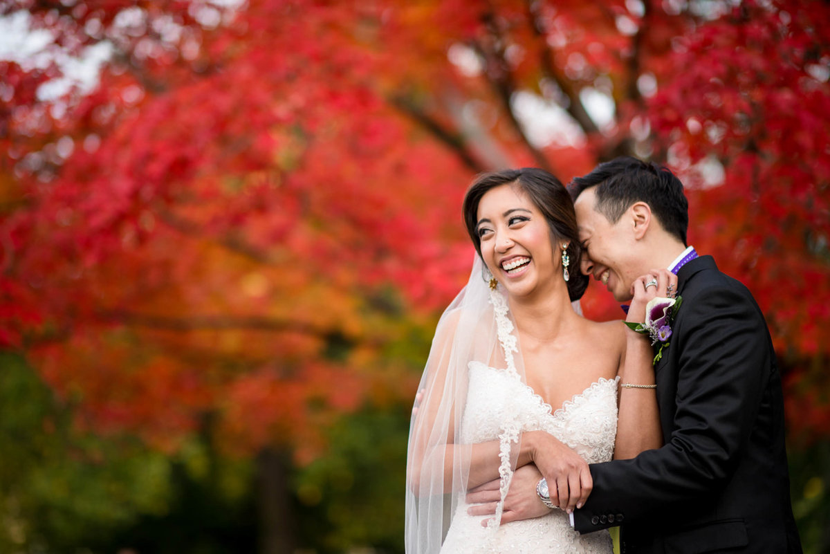 Boston public gardens wedding photo