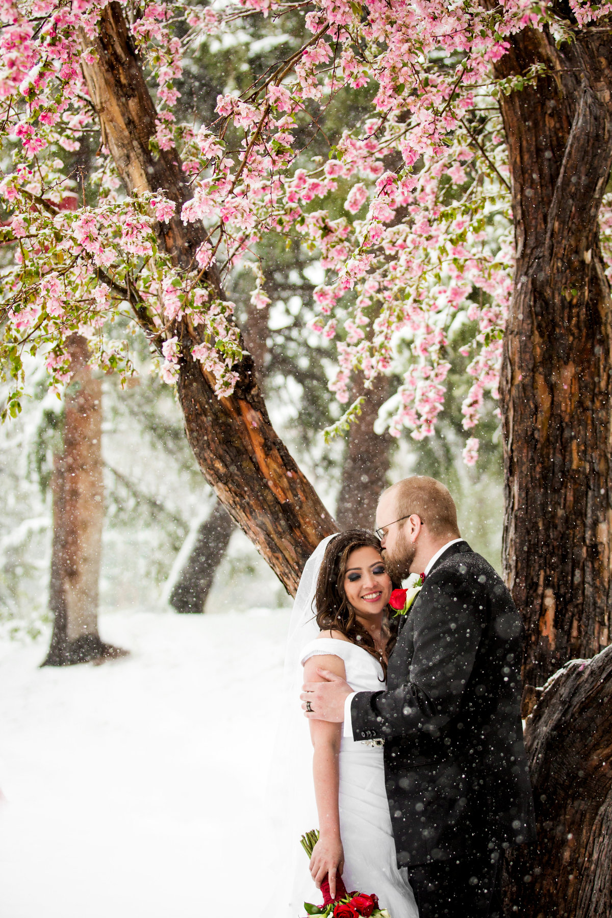 snowy-colorado-wedding-photos