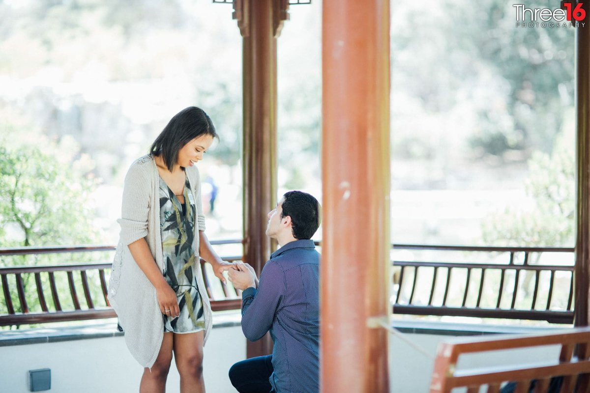 The Huntington Library & Gardens Engagement Photos San Marino Los Angeles County Weddings Photography