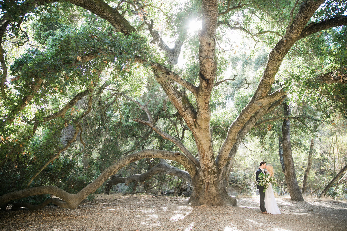 sunol_wedding_003