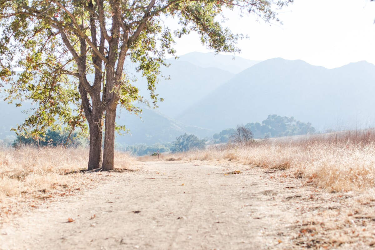 blog-Malibu-State-Creek-Park-Engagament-Shoot-boho-0030