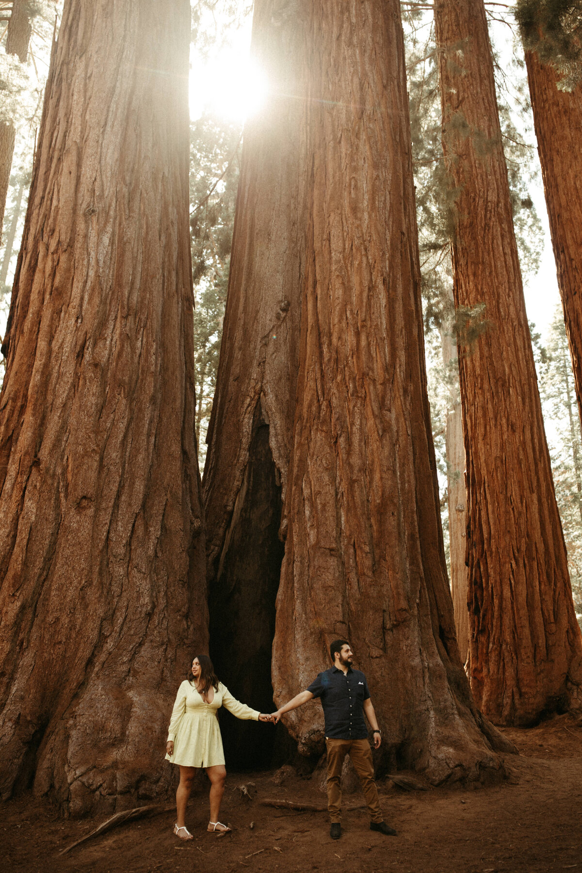 Sequoia-National-Park-elopement-packages-Y&B-63