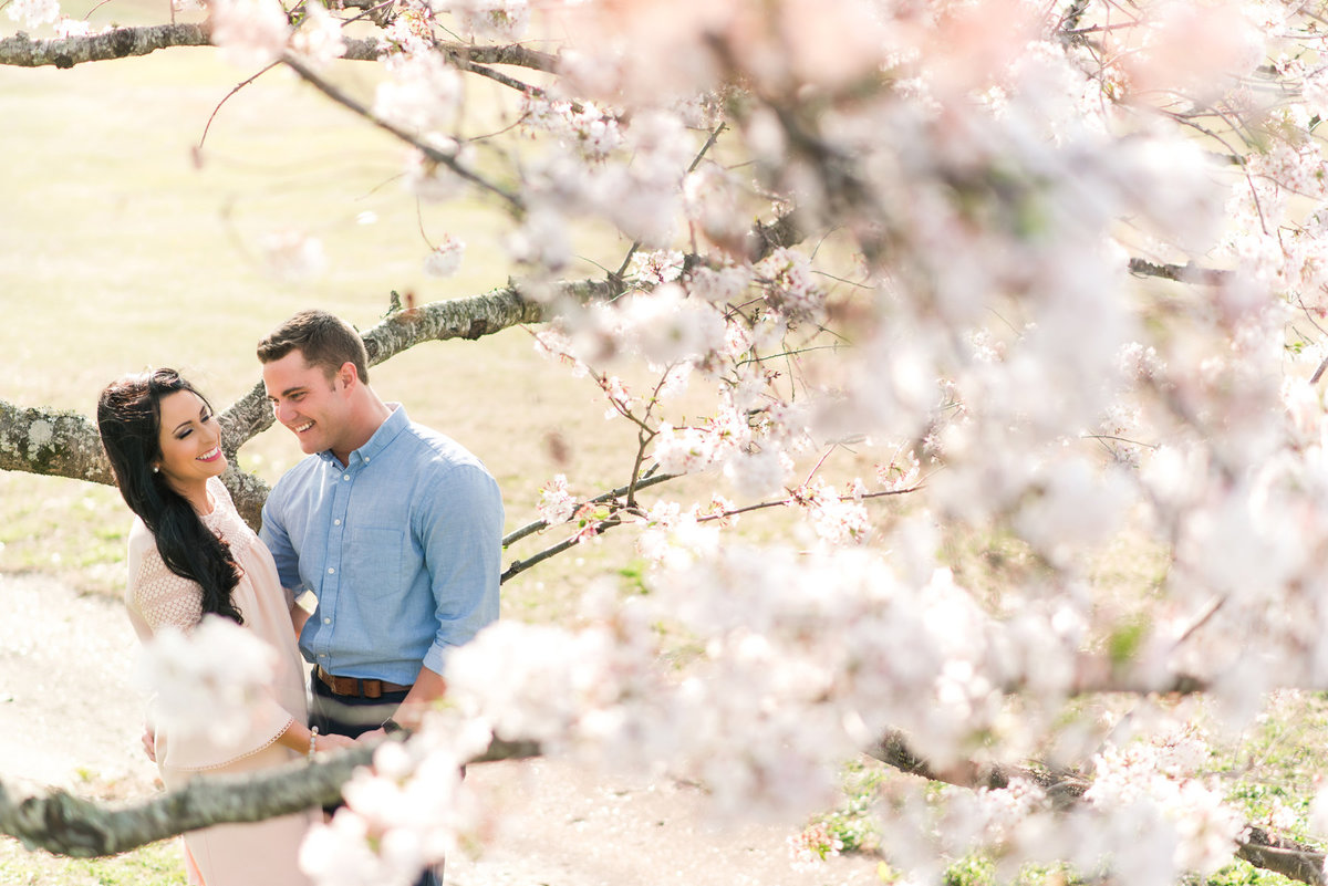 east memphis cherry tree engagement