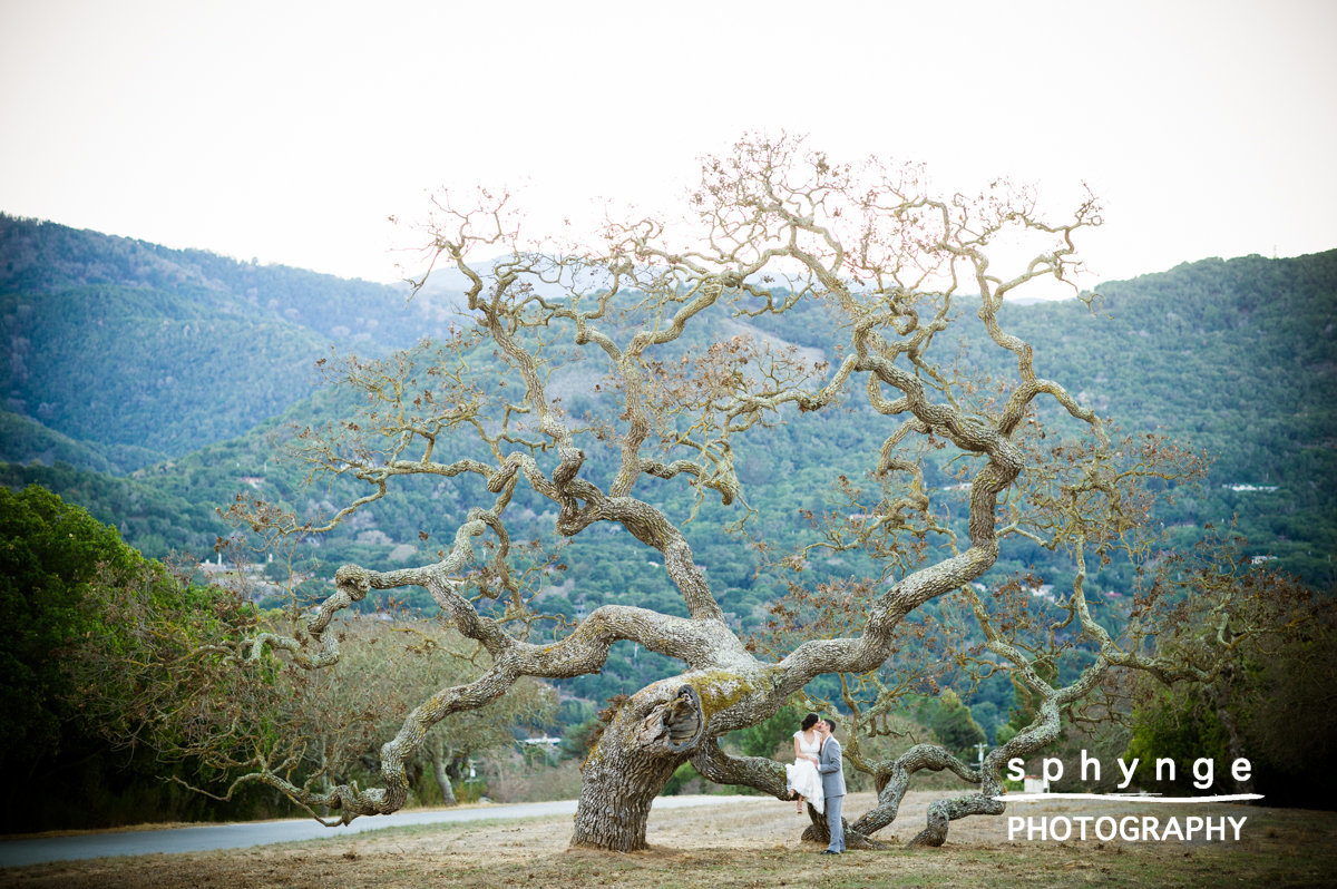 Teri and Steve - Sphynge Photography4