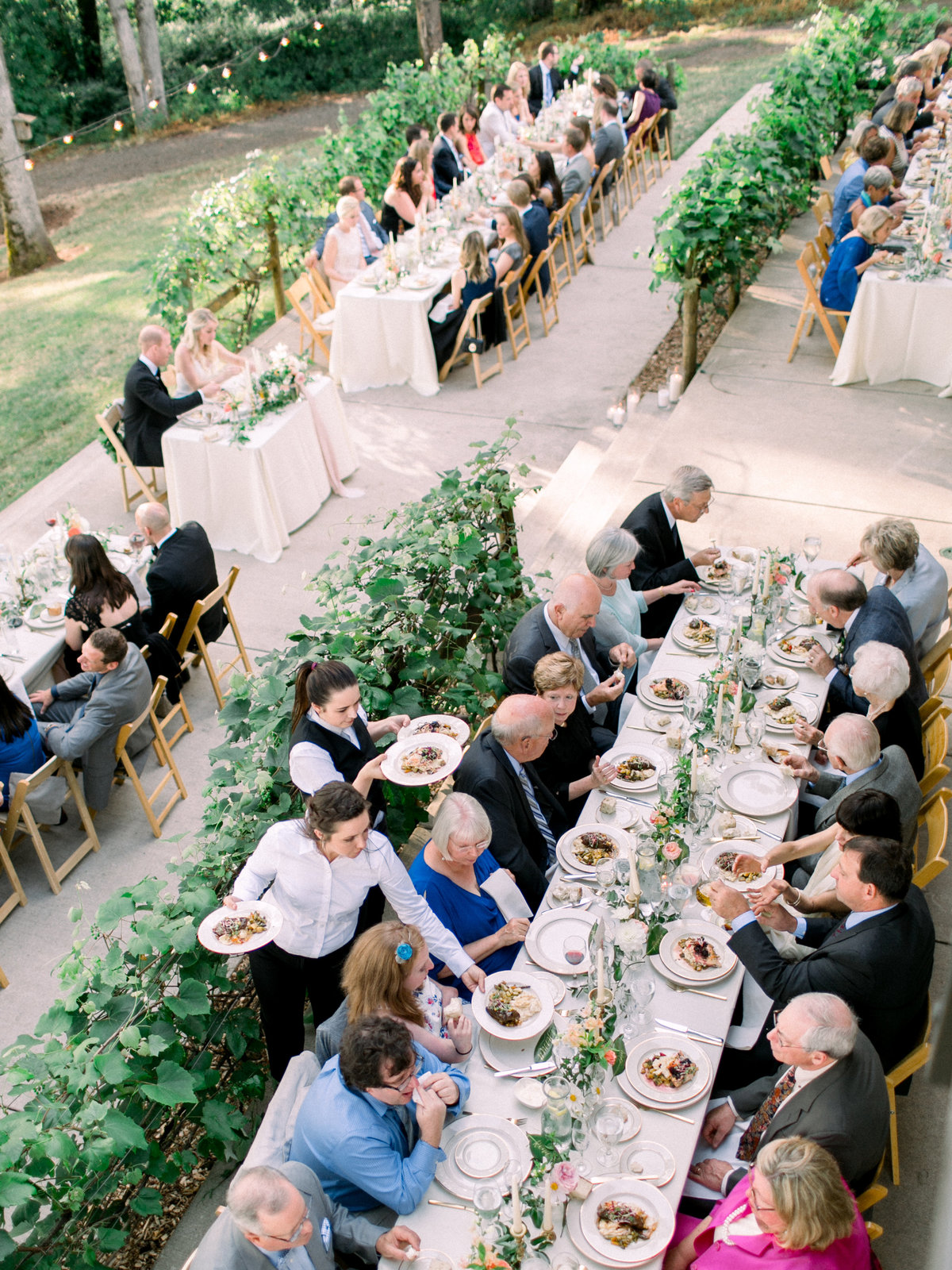 guests dining at a wedding