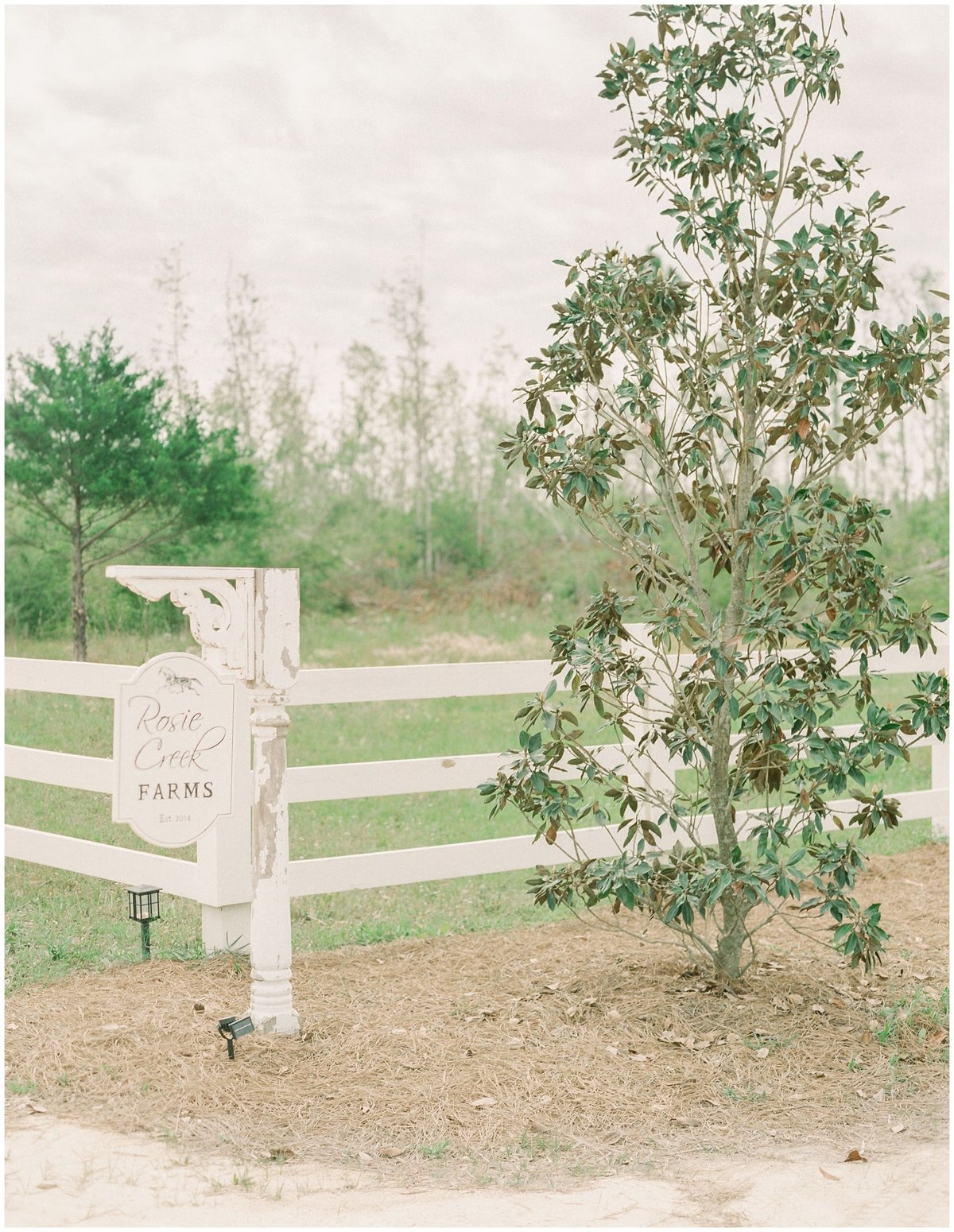 Rosie Creek Farms Session, Wedding Venue in Panama City Florida-maternity session_0041
