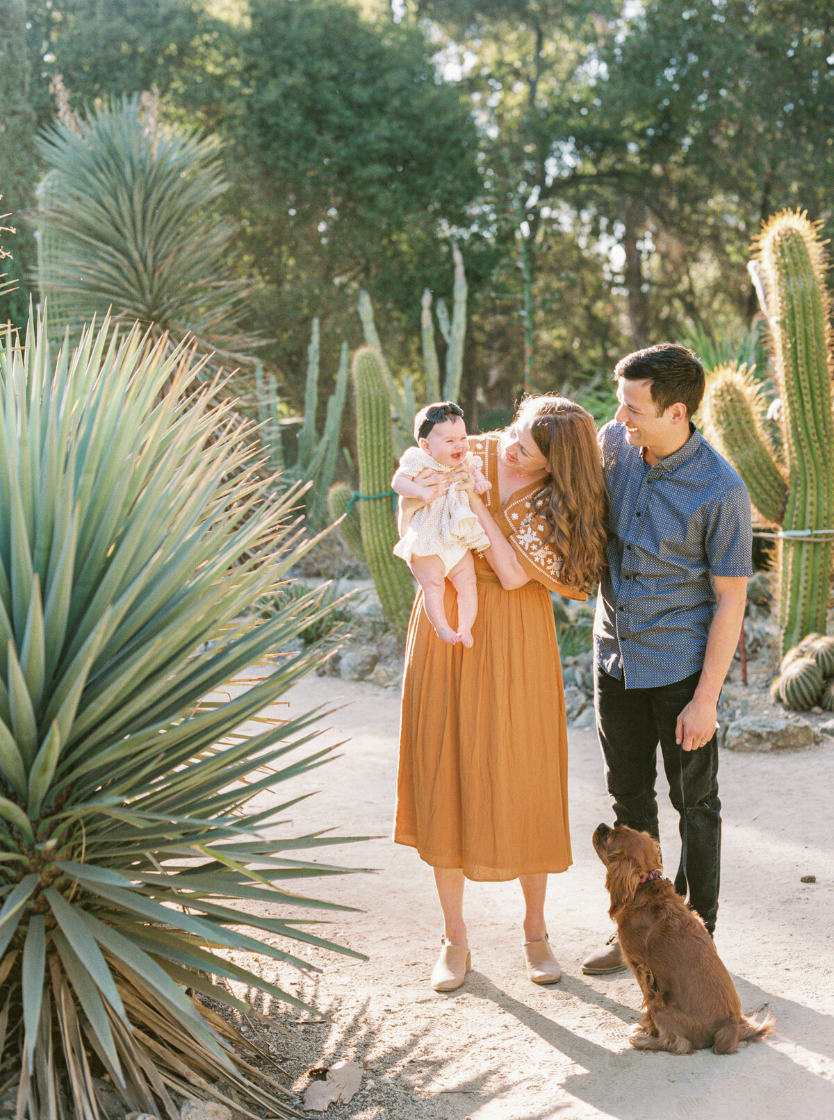 Olivia Marshall Photography- Cactus Desert Garden Family Photos-15