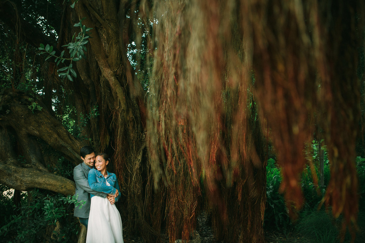 Engaged couple under willow tree