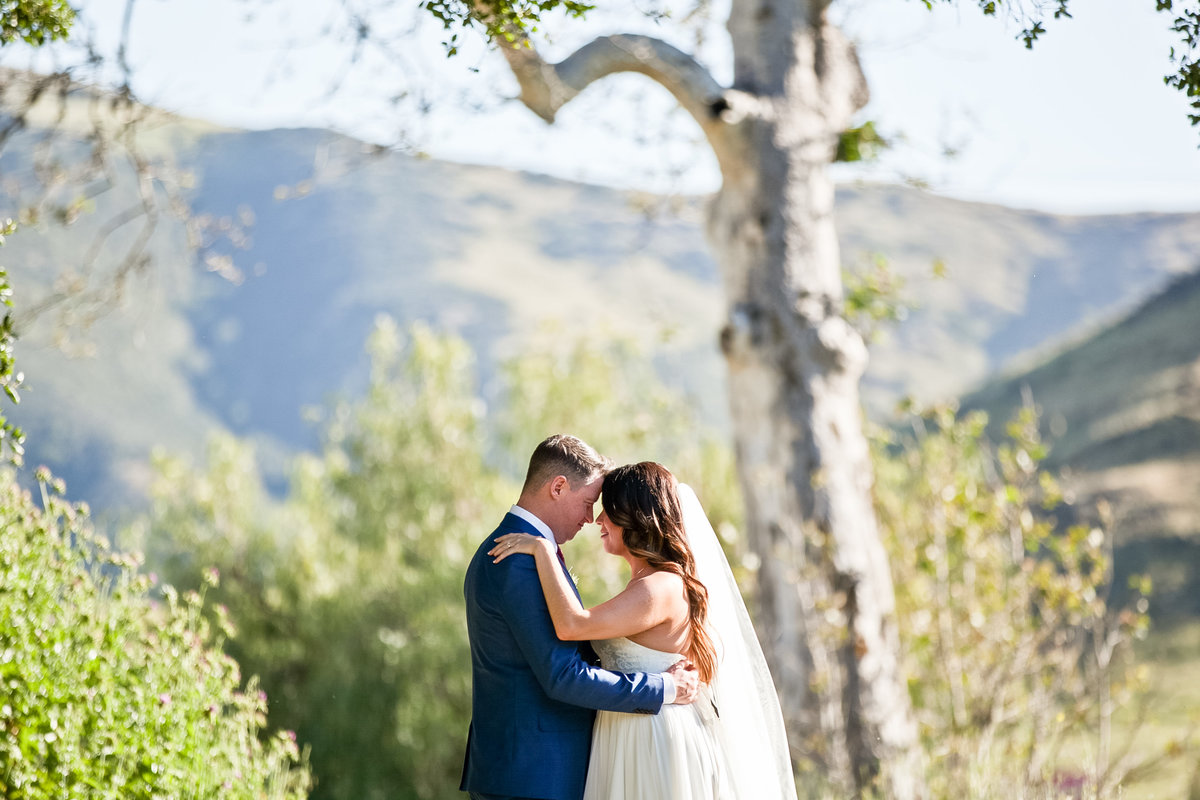 Romantic Spring Elopement  bride and groom in under tree with Spring bouquet at Higuera Ranch  in San Luis Obispo  by Amy Britton Photography Photographer in St. Louis