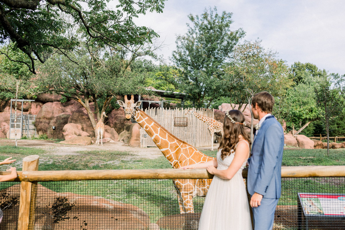 Dorothy_Louise_Photography_Zoo_Wedding-1628