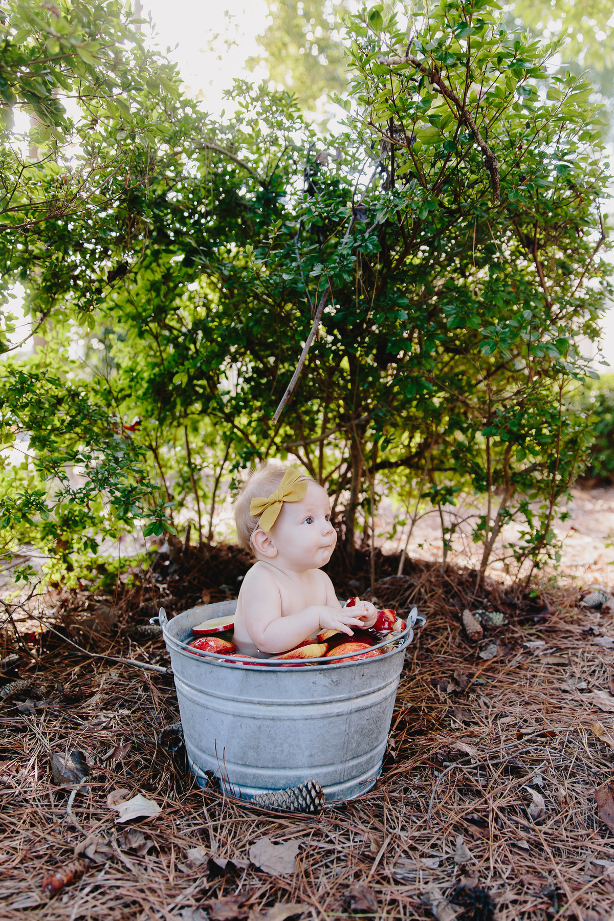 raleigh-baby-photographer-Ella6mo-5880