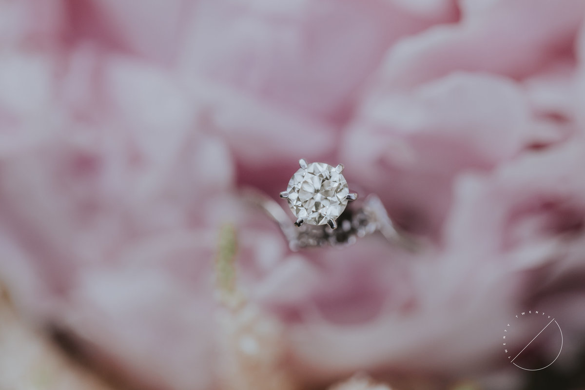 Macro shot of a beautiful engagement ring