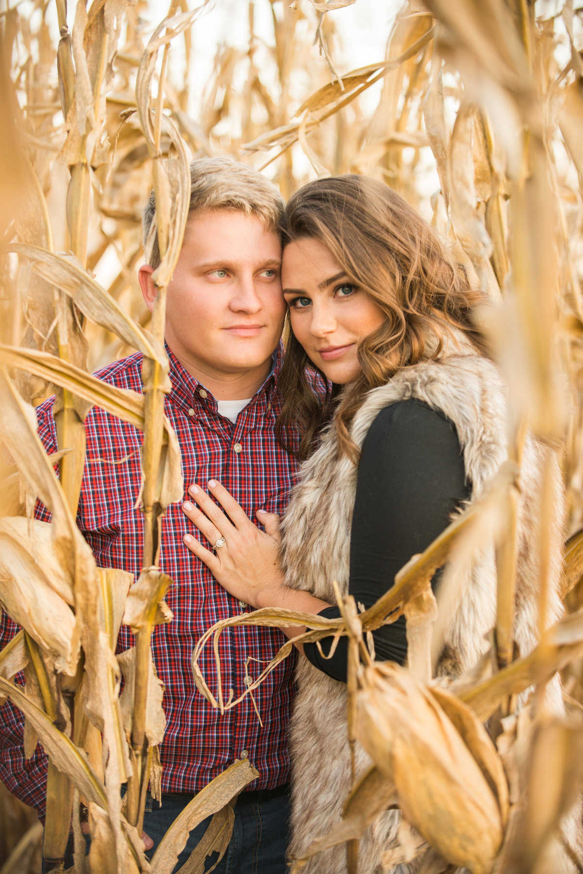 Engagement corn field gorgeous eyes