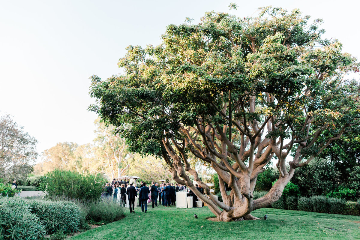 Malibu Private Estate Wedding_Valorie Darling Photography-8325