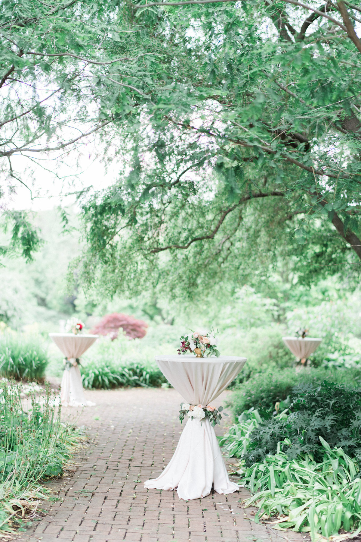 Ashley Link Photography-62