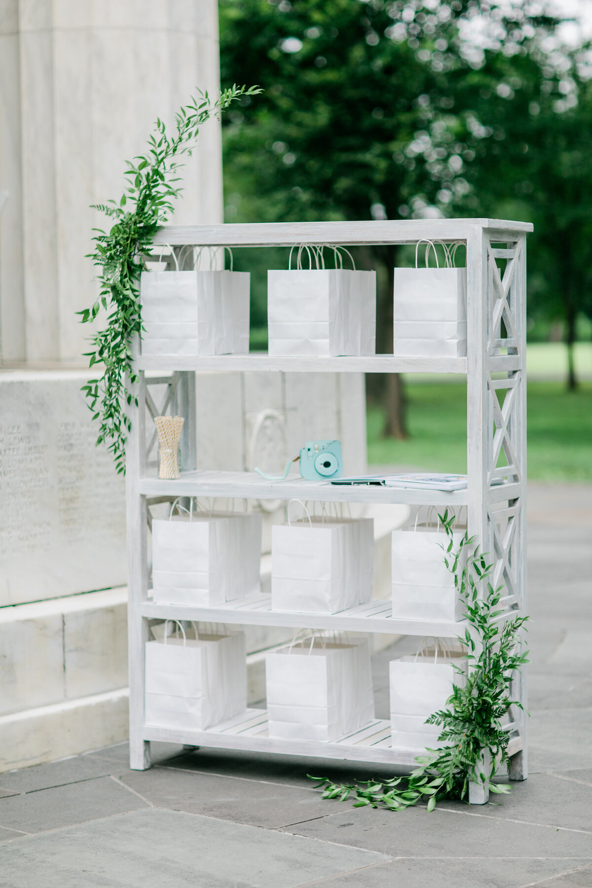 Solomon_Tkeyah_Micro_COVID_Wedding_Washington_DC_War_Memorial_MLK_Memorial_Linoln_Memorial_Angelika_Johns_Photography-3903