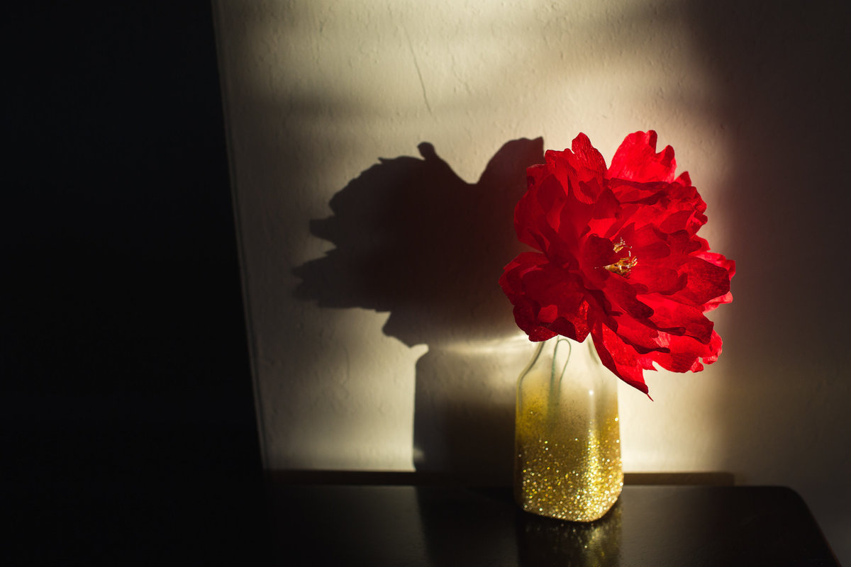 alice-che-photography-paper-flowers