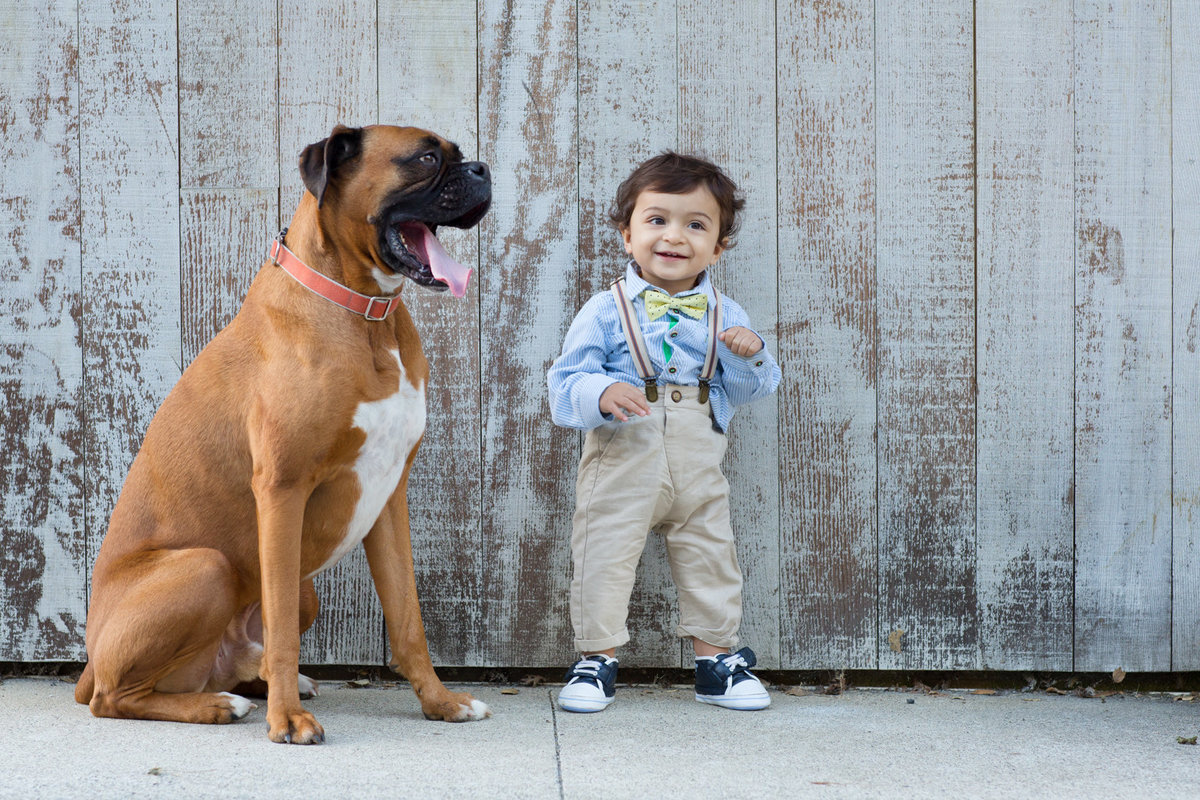Baby portrait photoshoot images with dog