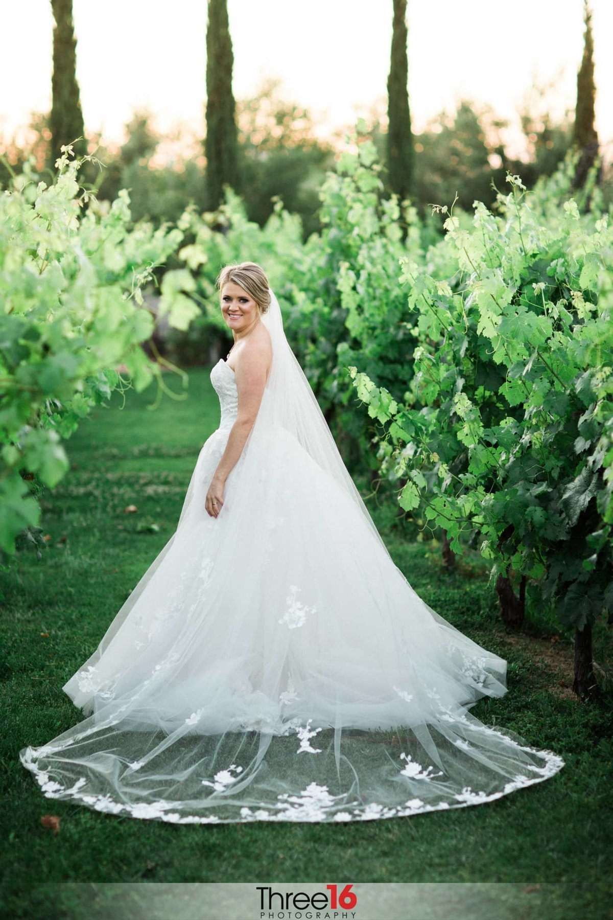 Bride posing in the winery at Mount Palomar Winery