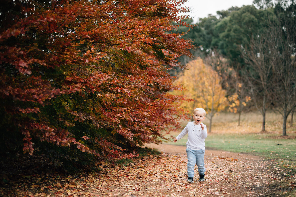 boy outside autumn Melbourne family photography And So I Don't Forget Photography