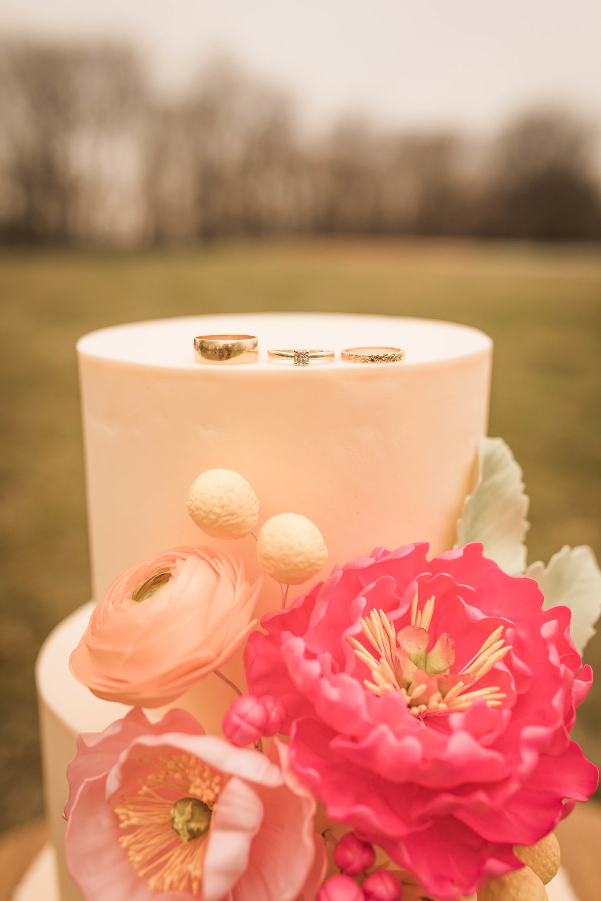 Retro Styled Shoot - Sophia and Andrew - St Louis Wedding Photographer - Allison Slater Photography 66