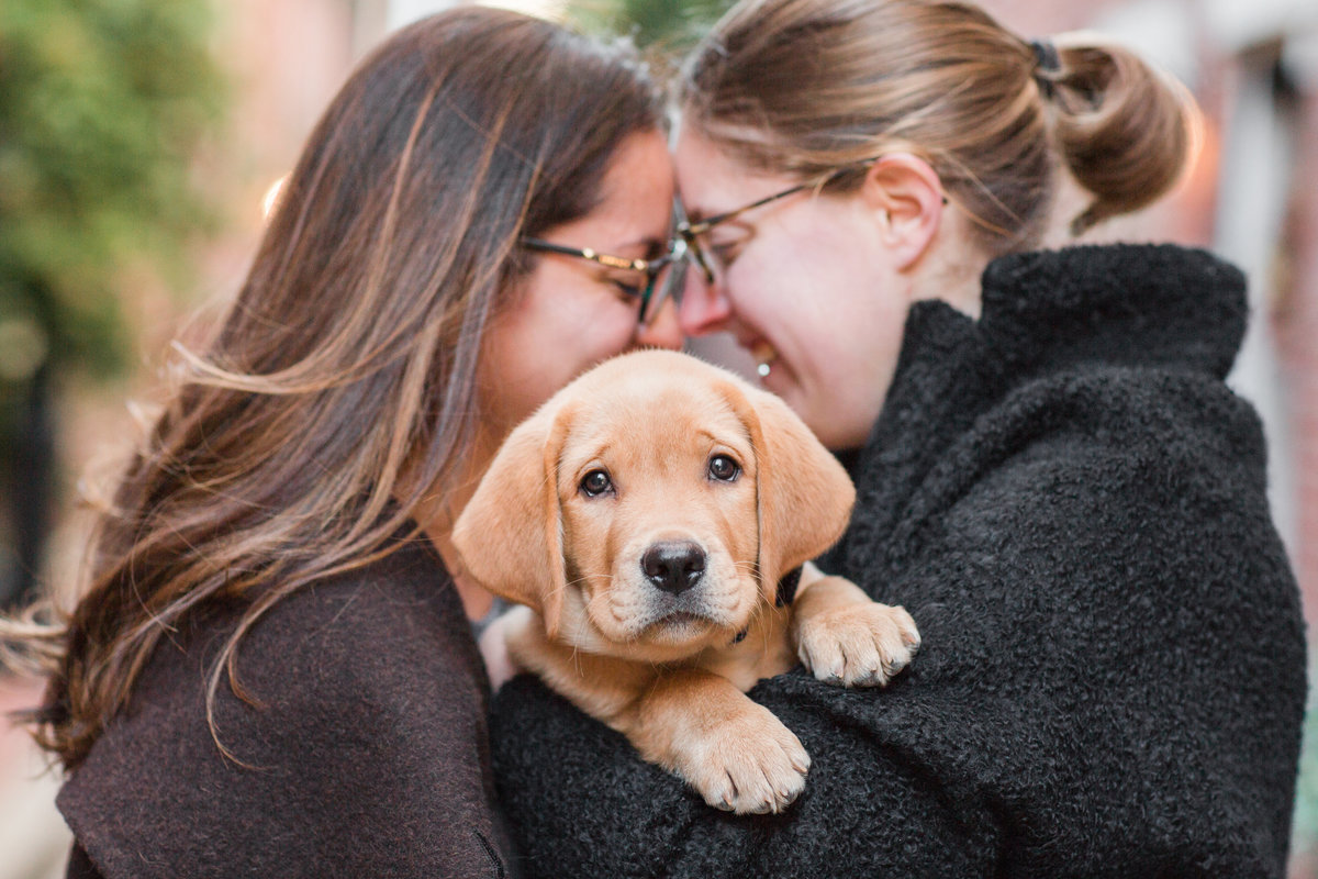 Couple holding fox red lab puppy