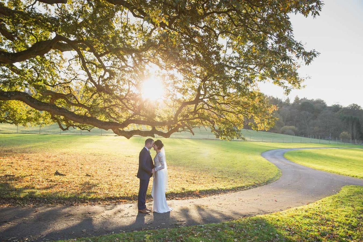 Evening sunshine wedding photo and St Audries Park
