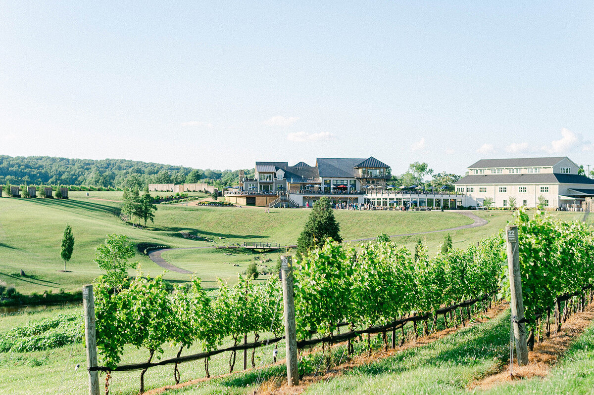 Jennifer Bosak Photography - DC Area Wedding Photography - DC, Virginia, Maryland - Kaitlyn + Jordan - Stone Tower Winery - 7