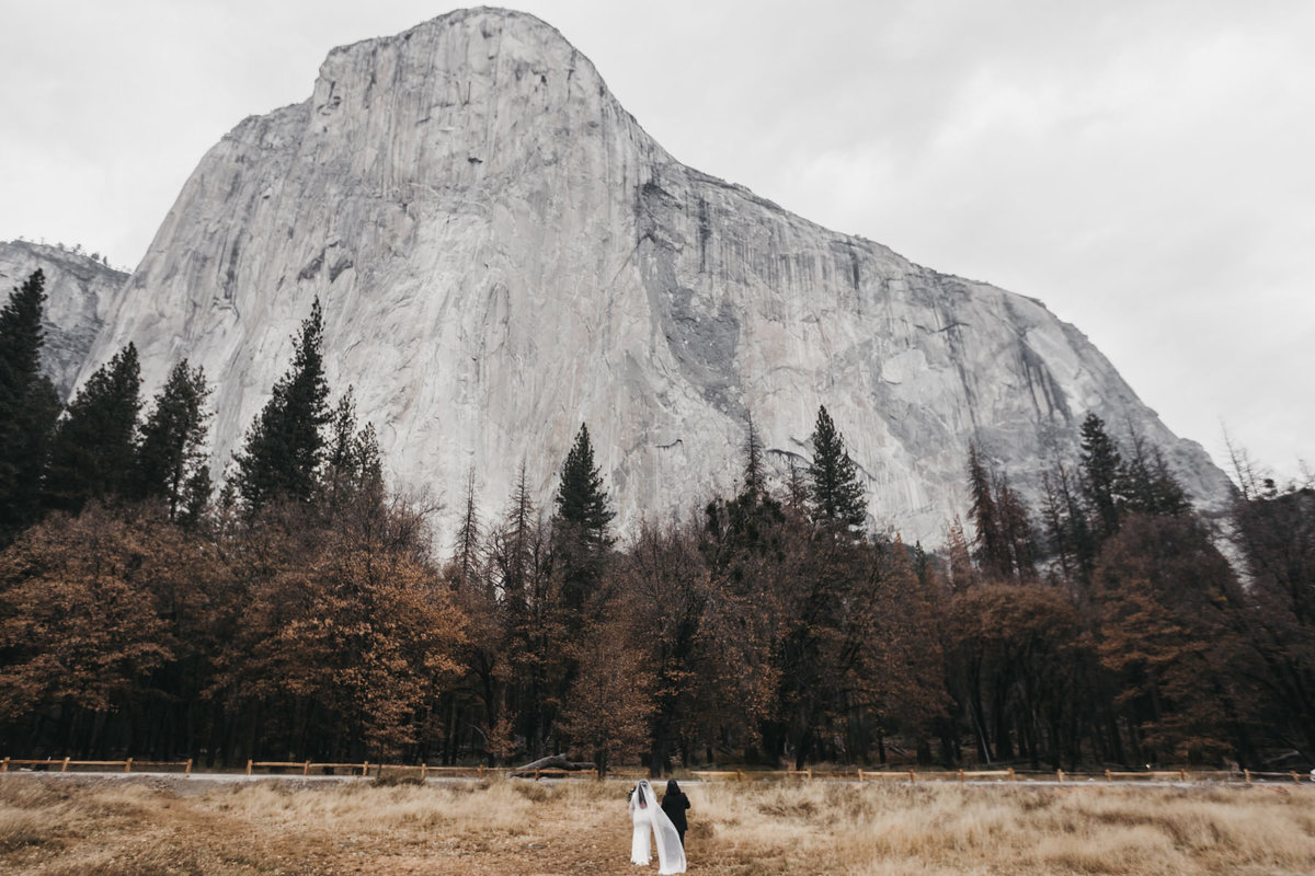 athena-and-camron-how-to-elope-in-yosemite-valley-ceremony4